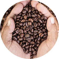 we-roast-and-enjoy-great-coffee