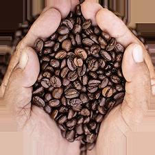 we-roast-and-enjoy-great-coffee